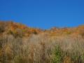 De herfst komt half november ook in de Ariege aankloppen