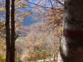 Herfstplaatje in de bergen