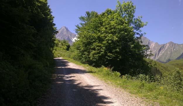 bergen in de omgeving van auberge les myrtilles